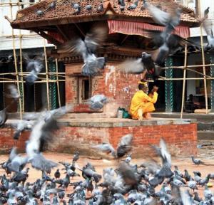 nepal Kathmandu 11 Durbar  Square Saddhu